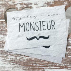 Lot de 10 mini cartes «Monsieur» – Herbes aromatiques