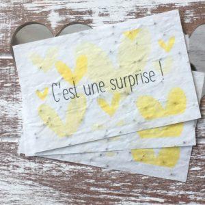 Lot de 10 mini cartes « Surprise » – coquelicots bio