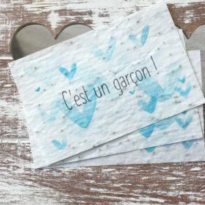 Lot de 10 mini cartes « Garçon » – coquelicots bio