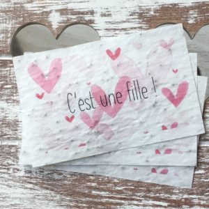 Lot de 10 mini cartes « Fille » – coquelicots bio