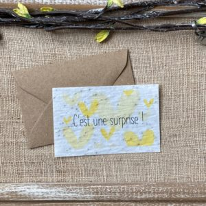 Mini carte Surprise – coquelicot bio