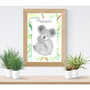 Koala Affiche personnalisable