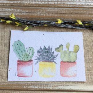 Trio de cactus – carte à planter A6